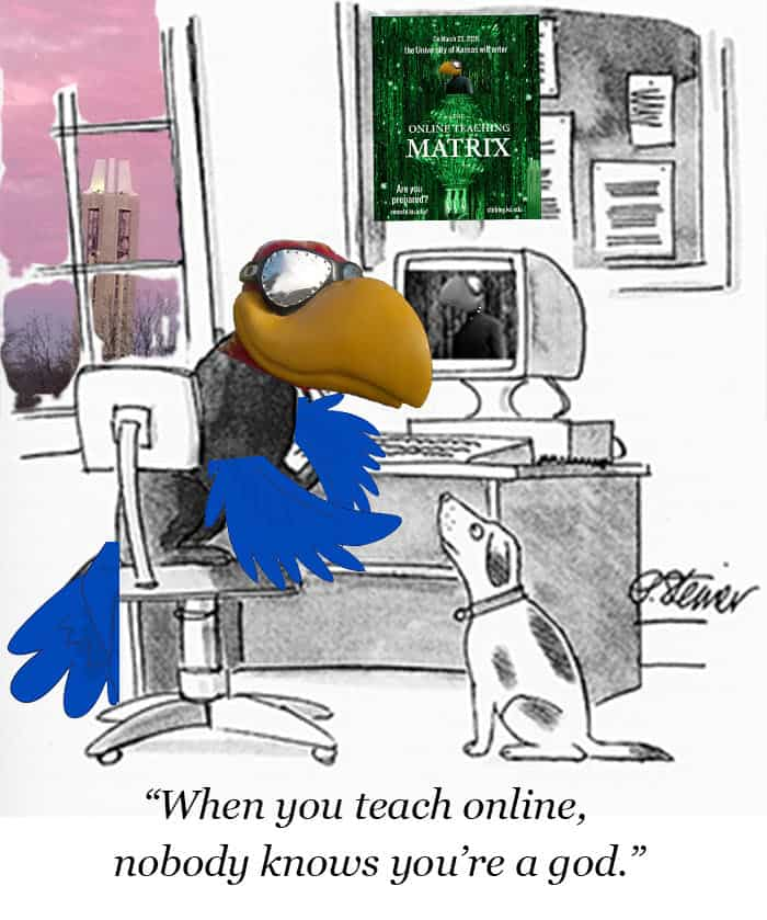 """jayhawk sits at computer and tells a dog, """"When you teach online, nobody knows you are a god."""""""